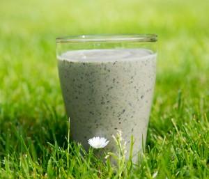Ontbijt smoothie avocado spinazie banaan blauwe bes